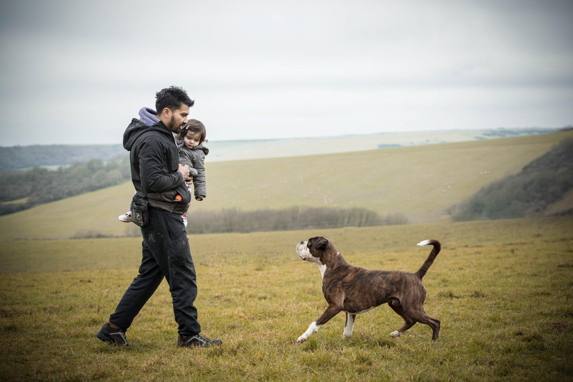 Kamal-Fernandez-Dog-Training-Online